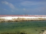 Salt flats. Strange red water.