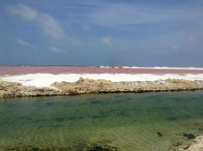 Salt flats. Strange red water.