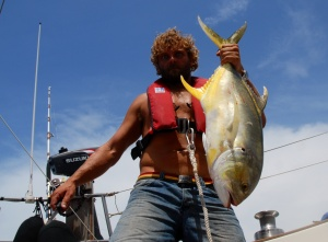 A great trevally. Massive mouth, hundreds of dead fish inside him.