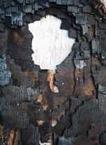 Burnt polystyrene